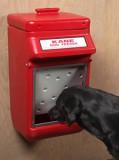 Dog Feeder - 25 Pound